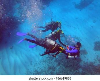 PORT DOUGLAS, AUSTRALIA -1 AUG 2017- People scuba diving under water in the Great Barrier Reef, Australia.