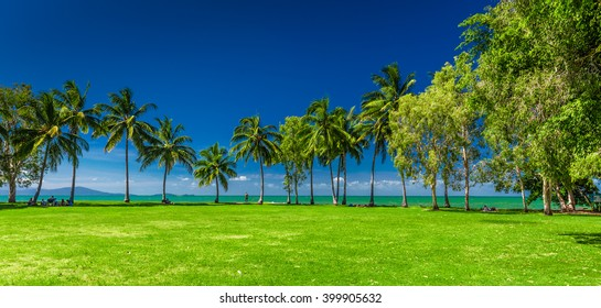 PORT DOUGLAS, AUSTRALIA - 27 MARCH 2016. Rex Smeal Park in Port Douglas with tropical palm trees and beach, Australia