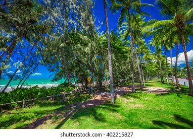 Port Douglas four mile beach and ocean on sunny day, north Queensland, Australia