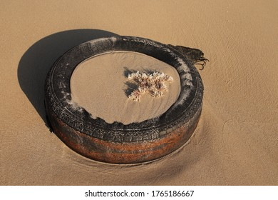 Port Elizabeth, South Africa - June 28, 2020:  An old car tyre (tire) that has washed up on a beach. Sea pollution concept image.