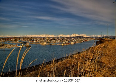 The port of Homer, Alaska, during spring time.