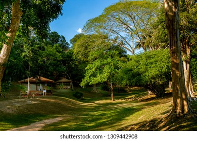 PORT OF SPAIN, TRINIDAD - February 4 2019: A Peaceful scene, in The Royal Botanic Gardens Port of Spain, Trinidad.