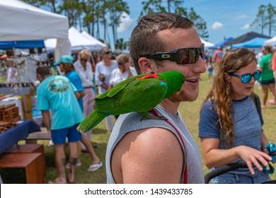 Forgotten Images, Stock Photos & Vectors | Shutterstock