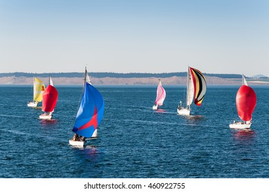 Port Townsend, Washington State, USA - race of sailboats on Strait of Juan de Fuca, Port Townsend, Washington State, USA