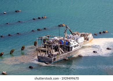 Port Underwood, Marlborough Sounds, New Zealand, February 17 2021: Fishermen working at marine farms harvesting mussels