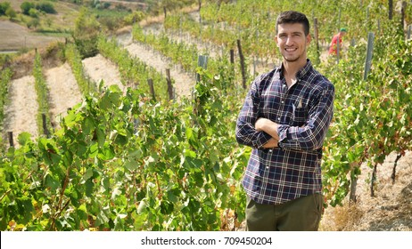 Portarait of smiling farmer Man into harvest vineyards , collects the selected grape bunches in Italy for the great harvest. bio concept, organic food, nature and fine wine handmade