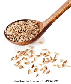 Portion of grains spelt , popular health food, in spoon isolated on white background