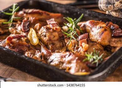 Portioned baked rabbit in a pan with onion rosemary and sauce.