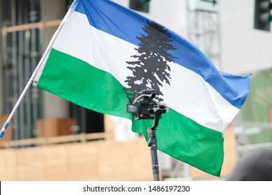 Portland, Oregon. Saturday, August 17, 2019. Cascadia flag waving at a protest.