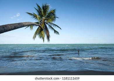 Porto de Pedras, Alagoas / Brazil - 09/12/2015: Patacho Beach - north coast of Alagoas - Coral Coast
