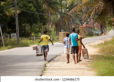 Porto de Pedras, Alagoas / Brazil - 09/13/2015: Boys carrying bird cages on the state highway AL-101