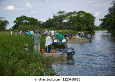 Porto Jofre, Pocone, MT/Brazil - Oct 14th 2018: Safari in Brazilian Pantanal