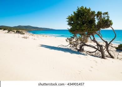 Porto Pino beach in Sant'Anna Arresi, south coast of Sardinia, Italy