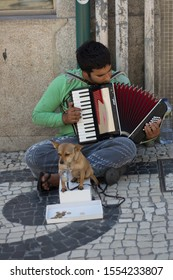 Porto, Portugal - 05/06/2019: Young gipsy man playing accordion in the street and being helped by a small dog holding a coin bucket with the mouth.