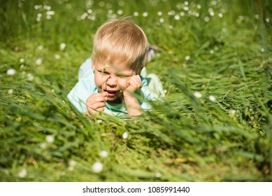 Portrait of a 3 year old boy lying on the grass with a flower in his hand. The boy has a rakish smile, he supports fist with his chin.