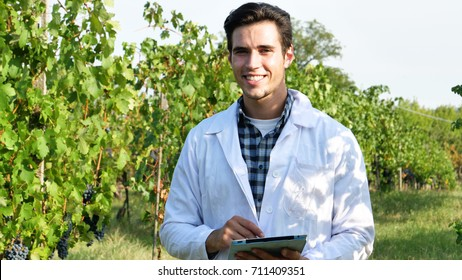 Portrait of an agronomist amidst a vineyard with a tablet in his hand to gather information on vine growth and wine production. Concept of: agronomist, science, agriculture, technology and bio.