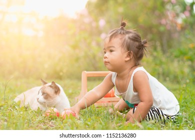 Portrait of Asian little girl with lovely cat and red apples in basket on green grass