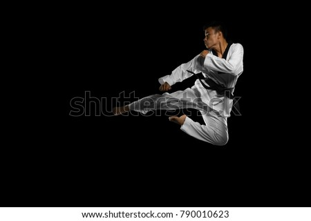 Stock fotografie na téma Portrait Asian Professional Taekwondo Black