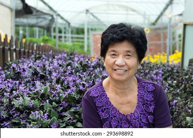 Portrait of Asian senior citizen smiling at lavender garden