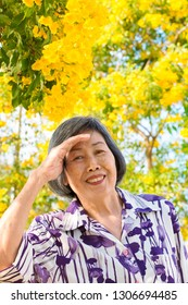 Portrait of asian senior woman ,relaxing under the trumpetbush tree.