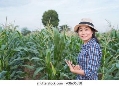 A portrait of Asian woman farmer agriculture in corn field with digital tablet - young attractive female success in agricultural small business farming
