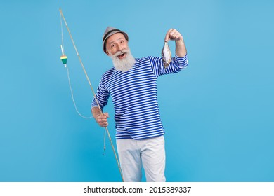 Portrait of attractive cheerful grey-haired man holding rod fresh fish food carp isolated over bright blue color background