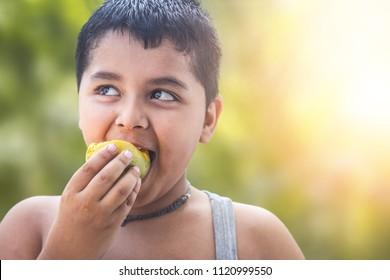 Portrait of a baby boy eating mango