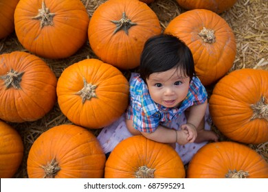 Portrait of a baby boy outdoors in a pumpkin patch.