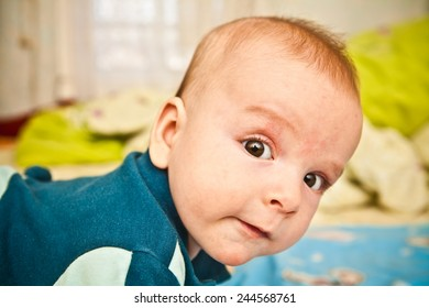 portrait of a baby looking at the camera