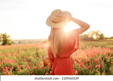 Portrait from back of inspired  young woman holding straw hat and looking at horizon. Freedom concept. Warm sunset colors. Poppy field.