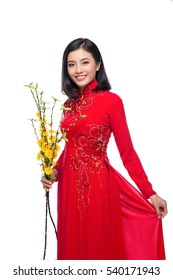 Portrait of a beautiful Asian woman on traditional festival costume Ao Dai holding Hoa Mai tree (Ochna Integerrima) flower. Tet holiday. Lunar New Year.