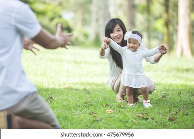portrait of Beautiful baby learn to walk with their parent in the park