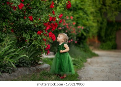 Portrait of a beautiful blonde girl with flowers of wild rose, bush of a red rose. A little girl stands near a rose bush and sniffs flowers. Girl in a green dress outdoors in the garden outdoors.