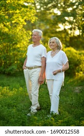 Portrait of beautiful caucasian senior couple posing in the summer park