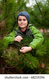 Portrait of a beautiful child outdoor, among pine branches