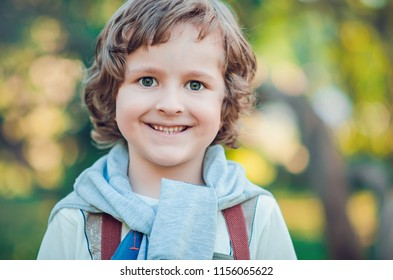 portrait of the beautiful curly-headed five-year-old boy ?lose up
