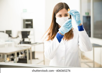 Portrait of a beautiful female chemist looking analyzing a blood test tube in a laboratory