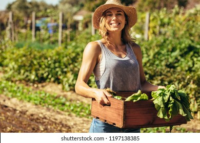 Portrait of beautiful female gardener carrying crate with freshly harvested vegetables in farm. Young female farmer working in field.