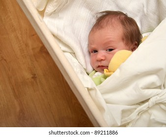Portrait of a beautiful newborn baby sleeping in a hammock