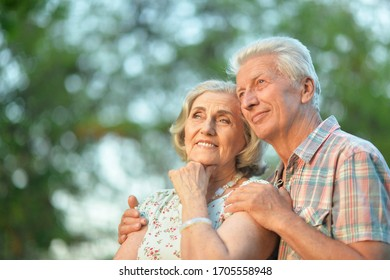 Portrait of beautiful senior couple hugging in the summer park