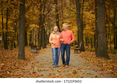 Portrait of a beautiful senior couple walking in park
