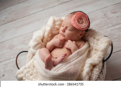 A portrait of a beautiful, seven day old, newborn baby girl wearing a large, fabric rose headband. She is swaddled with gauzy fabric and sleeping in a wire basket.