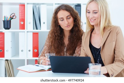 Portrait of beautiful smiling business woman explaining something to business partner.