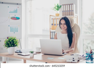 Portrait of beautiful smiling young brunette businesswoman sitting at bright modern work station and typing on laptop