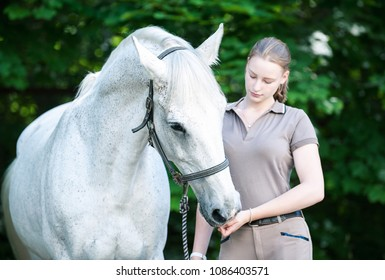 Portrait of beautiful white horse treats of feeding from pretty young teenage girl's palm standing in summer park. Vibrant colored outdoors horizontal image.