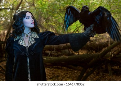 Portrait of a beautiful witch in the forest. On her hand sits a magical black raven.