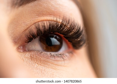Portrait of a beautiful woman with eyelashes and eyebrow correction. Eye close up.