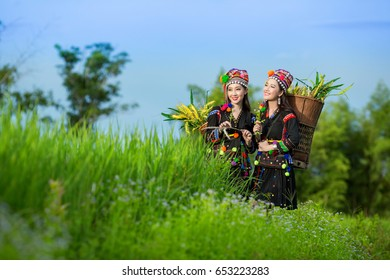 Portrait of beautiful young asian lady Akha tribe in vivid flower garden