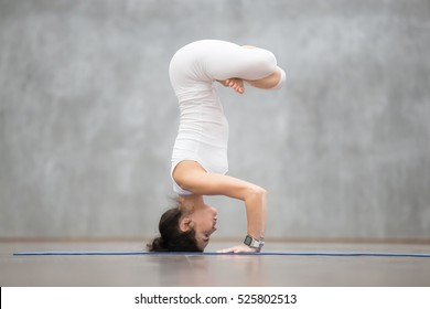 Portrait of beautiful young woman wearing white sportswear working out against grey wall, doing yoga or pilates exercise. Handstand with padmasana legs, Salamba sirsasana variation. Full length shot