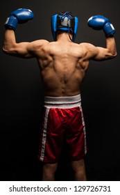 Portrait of  boxer in the dark